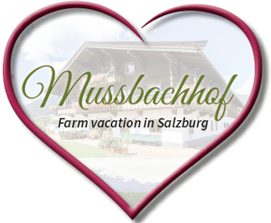 Farm Vacation in Salzburg - in Saalfelden at the Mussbachhof!